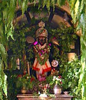 bindu-madhava-2