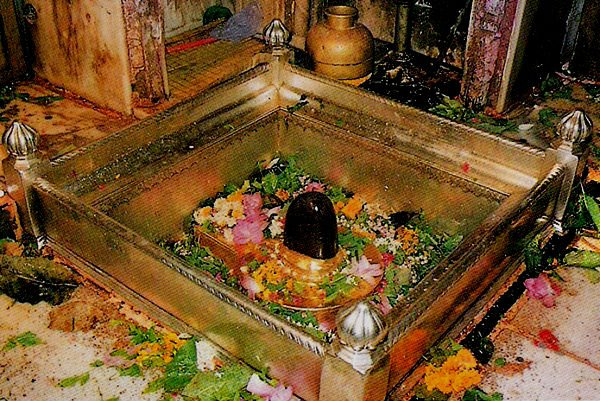 kashi-vishwanath-shivling